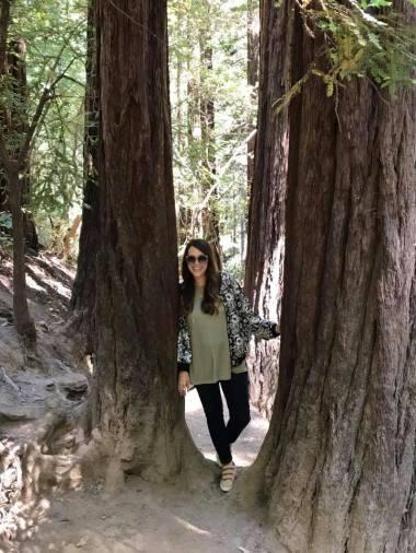 muir woods 10